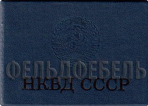 История органов НКВД РСФСР 19171930 гг  VK
